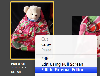 iphoto_edit_using_external_editor_1mar2010.png